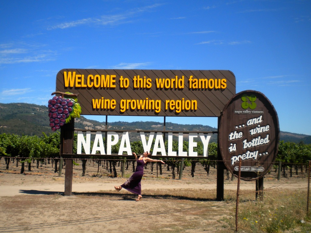 Napa Valley in a Day